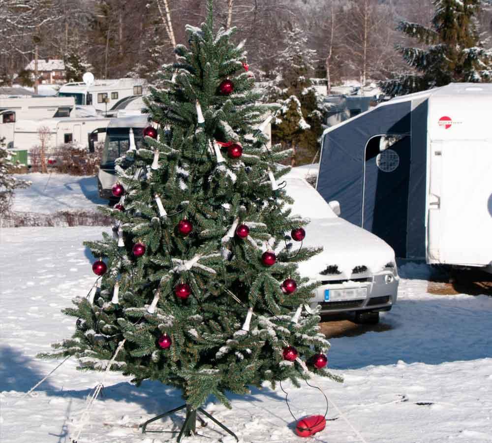 Silvester Weihnachtsbaum